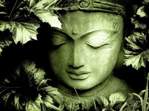 green_buddha by Anu Sri