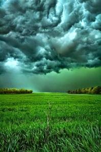 Storm from Skyler g