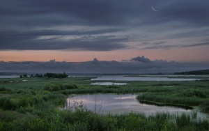Dawn from Irina Shapronova