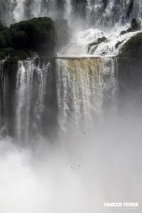 Iguazu Falls,  Brazil by Marcos Ferro