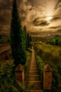 The eye of the path by Mr Friks Colors
