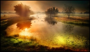 awakening by jose arley agudelo