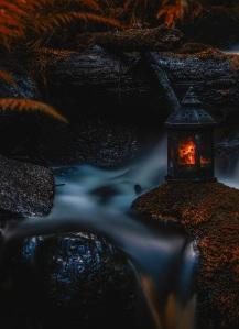 lamplight by Mikko Erholtz