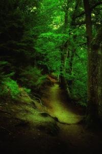 Fairytale par Anders J.