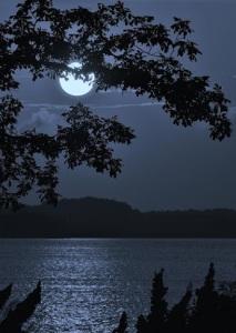Moonlit from Kasia Maliniak