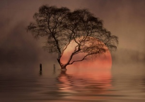 Sunrise by by Veronika Pinke