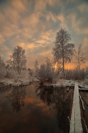 Winter from Andrey Mashnich