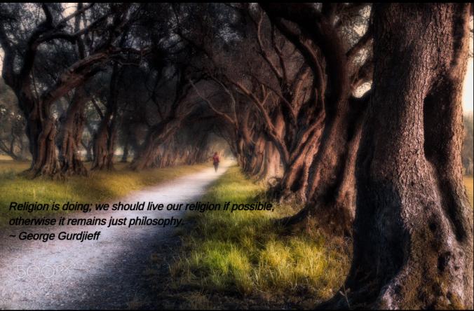 Forest walk from David Martinez Lombardia
