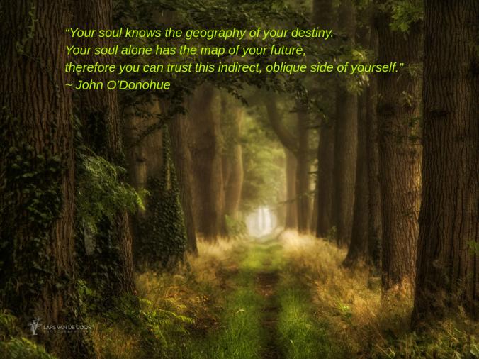 Pathway from Lars van de Goor