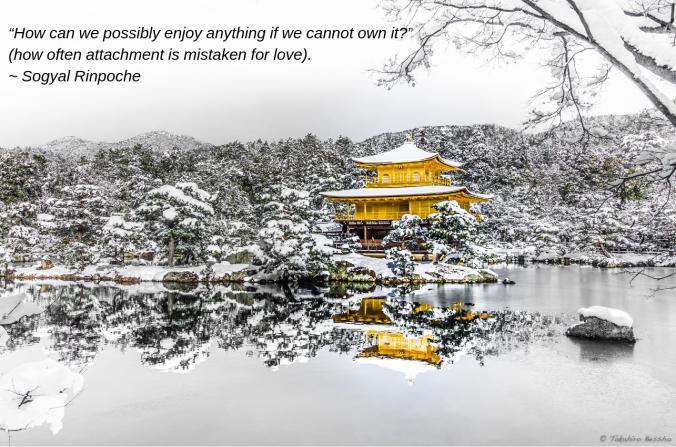 Wonder from Takahiro Bessho