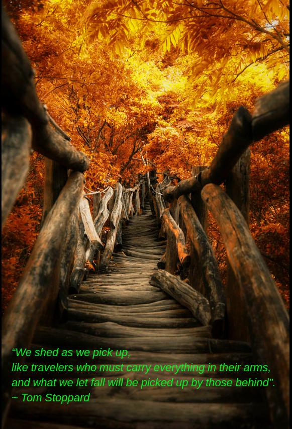 golden path by Hanson Mao