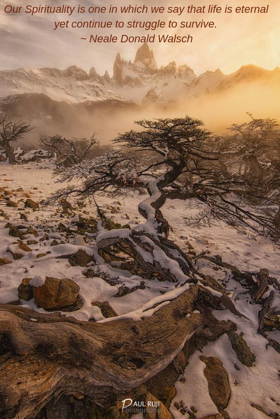 WInter in Patagonia by Paul Ruji