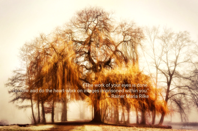 willow-from-inge-bovens