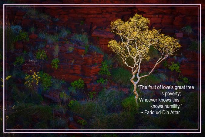 Karijini National Park Western Australia by Konstantin Iagoudine