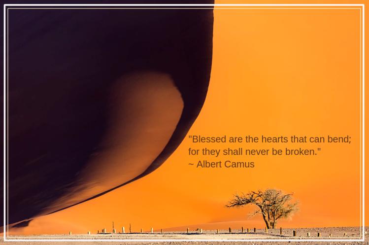 Namib desert from Francesco Riccardo Iacomino