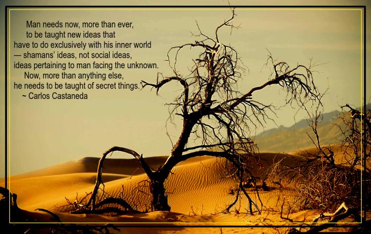 Death Valley from Olivier van Branteghem.png