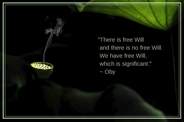 freeWill from Oby