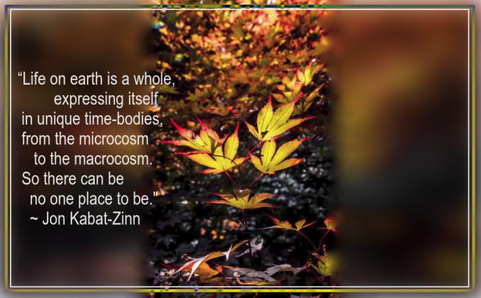 autumn from stephen robinson