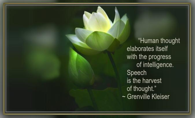 Lotus from Thomas Herzog